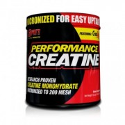 full_san_performance_creatine_-_300gm-340x340