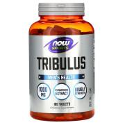now-tribulus